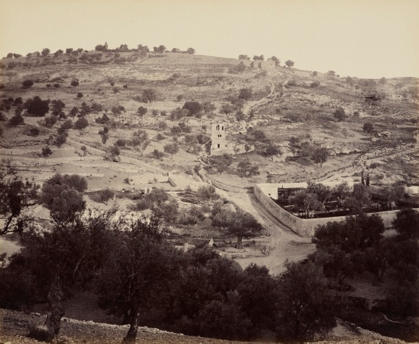 The Mount of Olives and Garden of Gethsemane